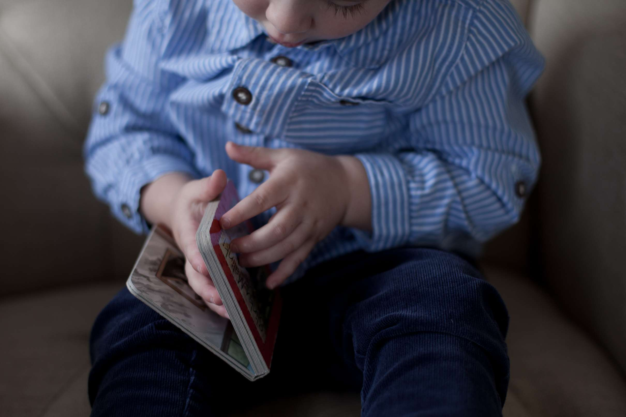 A portrait photo of a toddler holding a book