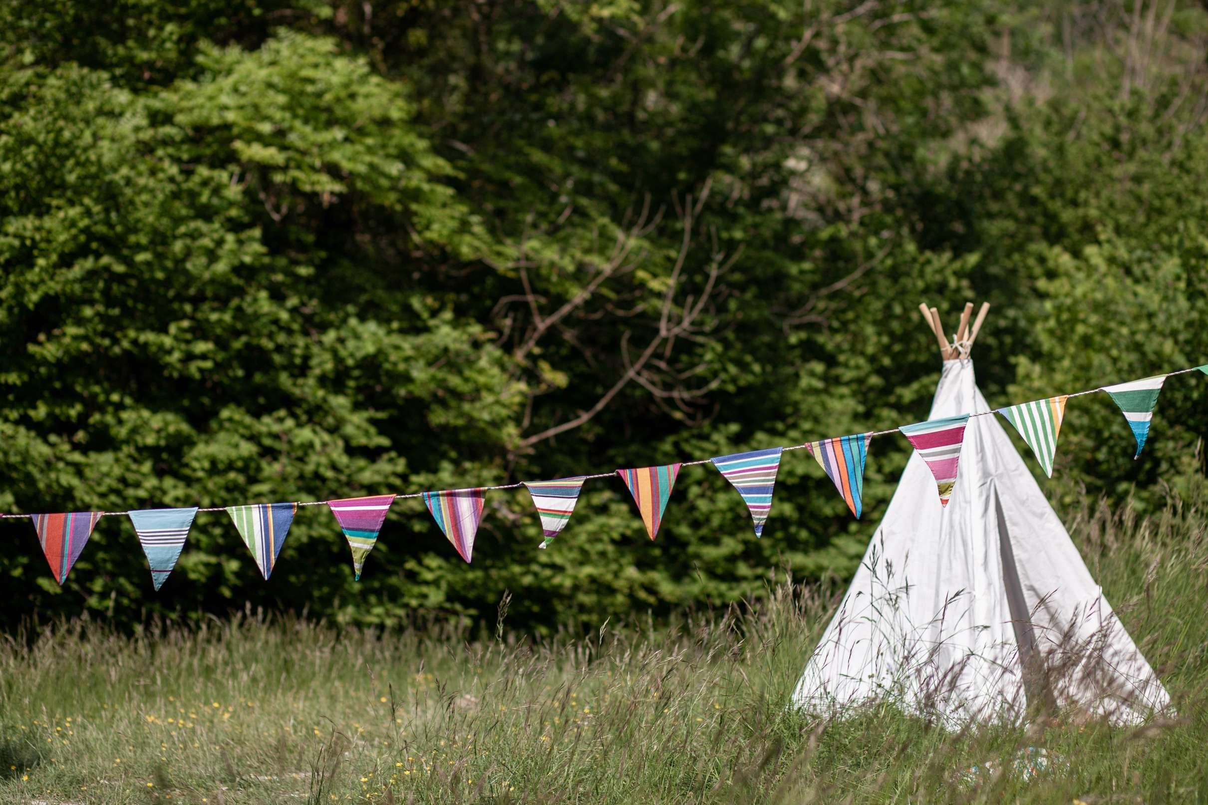 A photo of a teepee and bunting in a grassy field